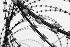 Rete fissa 3 del filo Filtro in bianco e nero Immagine Stock Libera da Diritti
