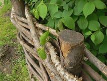 Rete fissa del giardino Fotografia Stock