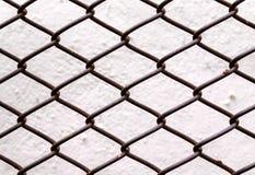 Rete fissa di collegamento Chain Fotografia Stock Libera da Diritti