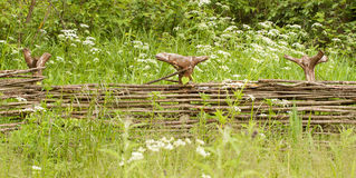 Rete fissa di vimini di legno Fotografia Stock