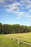 Rete fissa e cielo blu del campo Immagini Stock Libere da Diritti