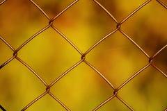 Rete metallica Fotografia Stock Libera da Diritti