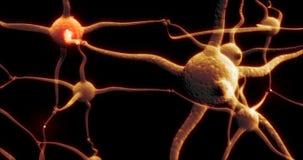Rete reale della sinapsi del neurone con attività di impulso elettrica rossa capace di avvolgere illustrazione di stock