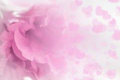 Retentit à abrégé sur floral doux style le macro concept pour l'idée Photographie stock