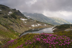 retezat национального парка Стоковое фото RF