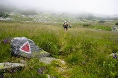 Retezat berg Arkivfoto