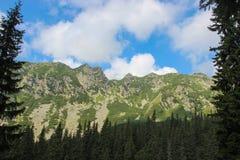 Retezat berg Royaltyfri Bild