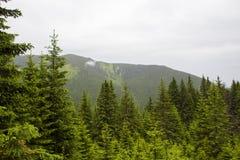 Retezat mountain Stock Photos