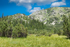 Retezat Mountains Stock Photos
