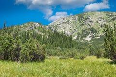Retezat Mountains stock photos
