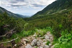 Retezat Mountains, Romania, Europe Stock Image