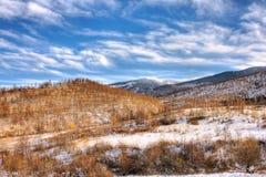 Retezat winter stock image