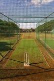 Reti di pratica del cricket Fotografia Stock