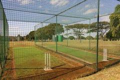 Reti di pratica del cricket Immagini Stock Libere da Diritti