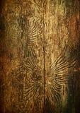 Reticoli degli scarabei di corteccia, priorità bassa invecchiata dell'annata Fotografie Stock Libere da Diritti