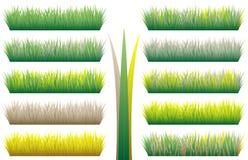 Reticoli dell'erba Fotografia Stock