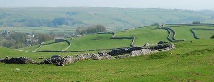Reticoli della parete di pietra in vallate del Yorkshire (Regno Unito) Immagini Stock