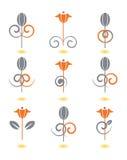 Reticoli di fiore isolati su bianco Immagine Stock Libera da Diritti