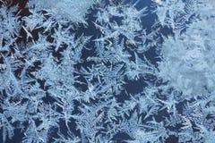 Reticoli di gelo su vetro Immagini Stock