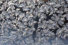 Reticoli di inverno fotografia stock