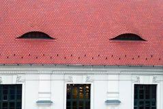 Reticoli interessanti del tetto in Ungheria Immagini Stock Libere da Diritti