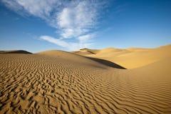 Reticoli nella sabbia fotografie stock