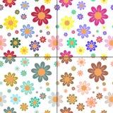 Reticoli senza giunte con i fiori Fotografie Stock Libere da Diritti