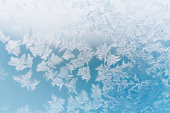 Reticoli su vetro nel giorno di inverno gelido Priorità bassa di natale Immagine Stock