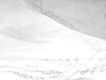 Reticolo astratto 6 del merletto fotografia stock