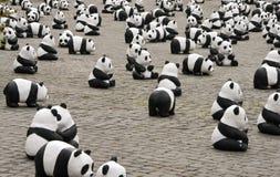 Reticolo del panda Immagini Stock