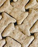Reticolo dell'osso di cane Fotografia Stock