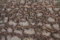 Reticolo della crepa della superficie della strada asfaltata Fotografie Stock Libere da Diritti