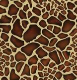 Reticolo della pelle della giraffa Immagini Stock Libere da Diritti