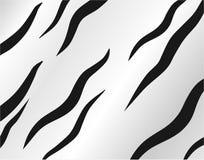 Reticolo della pelle della zebra Immagini Stock