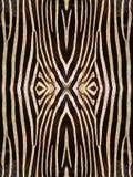 Reticolo della pelle della zebra Immagini Stock Libere da Diritti