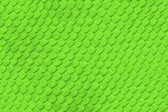 Reticolo della pelle di serpente verde Fotografia Stock