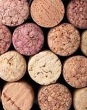Reticolo della priorità bassa dei sugheri delle bottiglie di vino Fotografie Stock Libere da Diritti