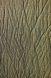 Reticolo della sabbia Fotografia Stock