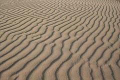 Reticolo della sabbia Immagini Stock Libere da Diritti