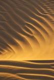 Reticolo della sabbia del deserto Fotografia Stock