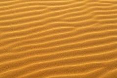 Reticolo della sabbia dorata sulla duna di sabbia Fotografia Stock