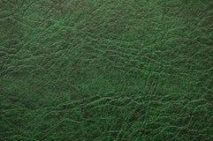 Reticolo di cuoio verde - possa Fotografie Stock Libere da Diritti