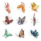 Reticolo di farfalla Immagine Stock Libera da Diritti