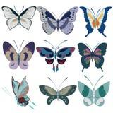 Reticolo di farfalla Fotografia Stock