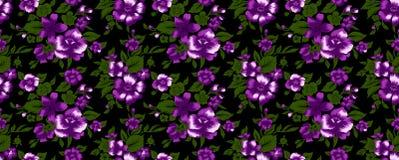 Reticolo di fiore 52 Fotografia Stock Libera da Diritti