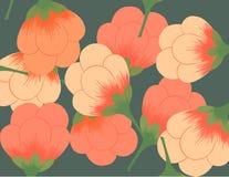 Reticolo di fiore del ventilatore 2 Fotografia Stock Libera da Diritti