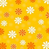 Reticolo di fiore della sorgente Fotografie Stock