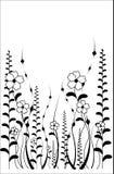 Reticolo di fiore di vettore su priorità bassa bianca Fotografia Stock