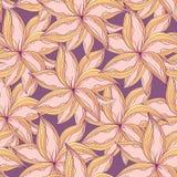 Reticolo di fiore senza cuciture Fotografie Stock