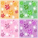 Reticolo di fiore senza giunte Fotografie Stock Libere da Diritti